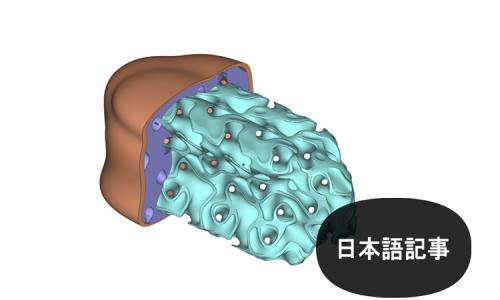 生物学的に関連のある医療用インプラントのためのラティス構造の設計