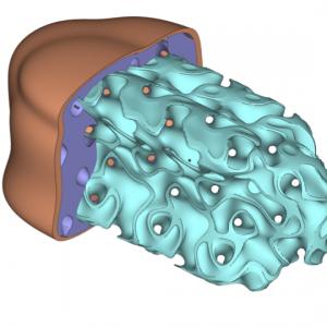 生物学的に関連のある医療用インプラントのための格子構造の設計
